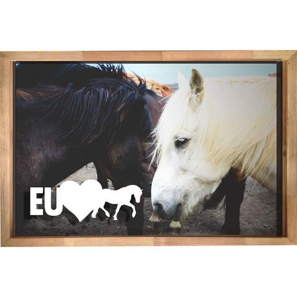 Quadro para Rolhas/Tampas - Eu Amo Cavalos