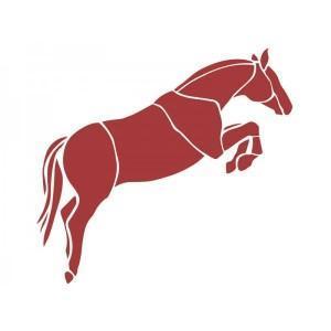 Adesivo de Carro Cavalo